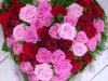 zalna-floristika-cvetlicarna-cvetnik-25