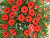 zalna-floristika-cvetlicarna-cvetnik-37